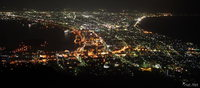 view--night of hakodate from mount hakodate