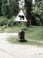 elephant crossing sign Siem Reap, South East Asia, Cambodia, Asia