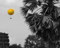 angkor balloon and palm tree Siem reap, South East Asia, Cambodia, Asia