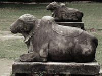 20081018123122_nandi_-_bull_of_shiva