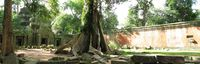 courtyard of ta prohm Siem Reap, South East Asia, Cambodia, Asia