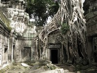 ta prohm gateway Siem Reap, South East Asia, Cambodia, Asia