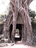 ta som east gopura Siem Reap, South East Asia, Cambodia, Asia