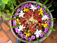 view--flower pot of luang prabang Luang Prabang, Vientiane, South East Asia, Laos, Asia