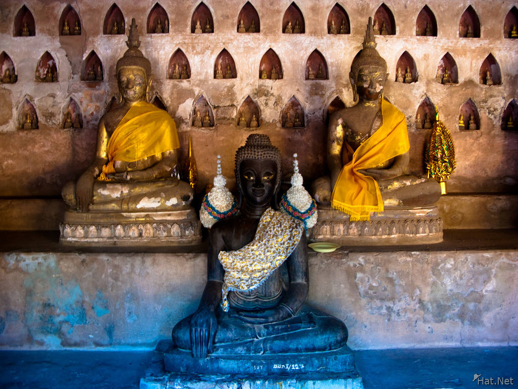 three lives of buddhas