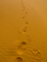 20101027115231_view--footprints_in_desert