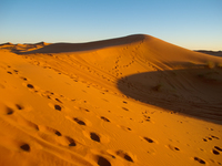 view--footprints on sand dune Merzouga, Sahara, Morocco, Africa