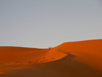 20101027172751_view--sand_dune_sunset