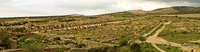 view--decumanus maximus Meknes, Moulay Idriss, Imperial City, Morocco, Africa