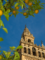 20101109161403_view--giralda_top