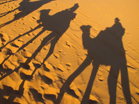 view--shadows of camel riders Merzouga, Sahara, Morocco, Africa