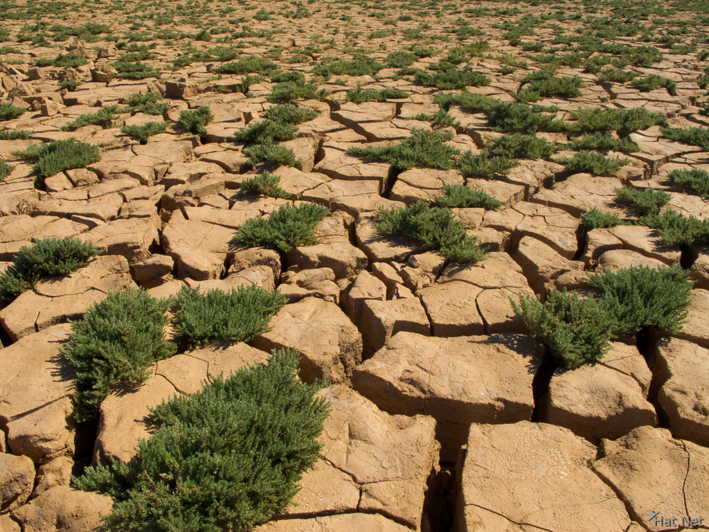 view--drought