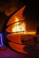20120902001527_fish_tail_in_flame